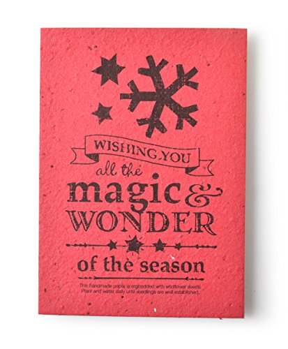 Bloomin Vintage Holiday Panel Cards - Handmade Seed Paper (Wishing You All the Magic & Wonder)