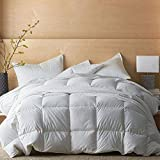 Kotton Culture Comforter 400 GSM Down Alternative 100% Organic Egyptian Cotton Cover 600 Thread Count Super Soft Medium Weight Premium Quality Duvet Insert (Queen/Full, White)