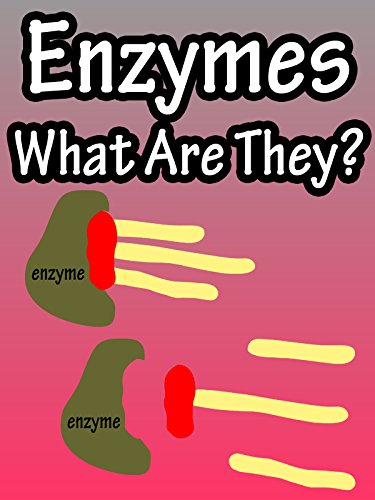 Enzymes, What Are They?