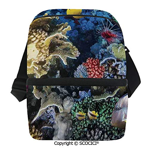 SCOCICI Cooler Bag Colorful Coral Reef and Fishes Colony in Red Sea Egypt Africa Underwater Life Image Insulated Lunch Bag for Men Women for Kayak,Beach,Travel,Work,Picnic,Grocery ()