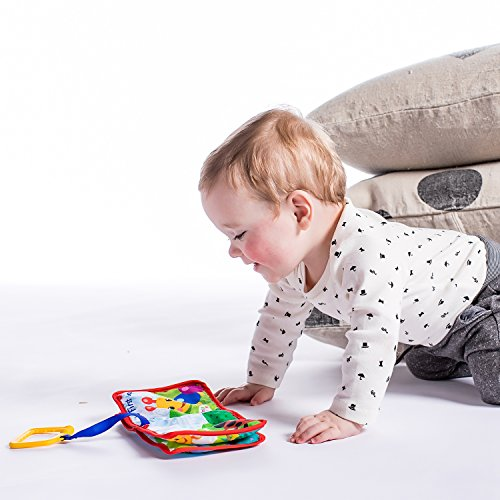 51LspvqJLBL - Baby Einstein Explore and Discover Soft Book Toy