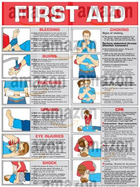 FIRST AID POSTERS PDF DOWNLOAD