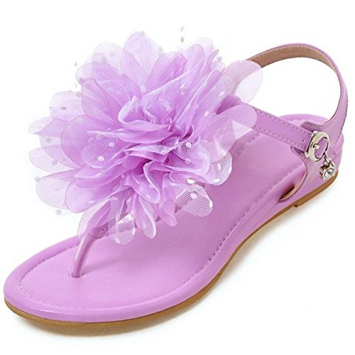 Flower Flop Flip with Beach Flat Bohemia Sandals TAOFFEN T Women 849 Purple Strap zxwvqwXB
