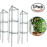 EasyGO Products EGP-GARD-020 Cages - Stakes-Vegetable Trellis-3 Pack Tomato Plant