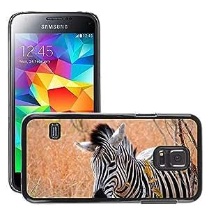Super Stella Slim PC Hard Case Cover Skin Armor Shell Protection // M00104923 Zebra Africa Nature Animal Striped // Samsung Galaxy S5 MINI SM-G800