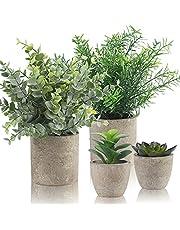 Alagirls 4 stycken konstgjorda växter, mini konstgjorda växter eukalyptus rosmarin suckulenter med kruka skrivbord kök badrum trädgård dekoration