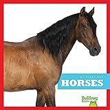 Horses (Bullfrog Books: My First Pet)