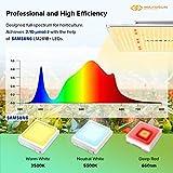 Grow Light, MAXSISUN PB 1000 LED Grow Lights for