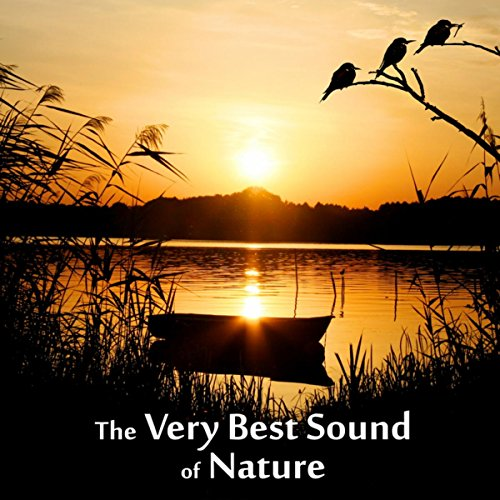The Very Best Sound of Nature - Birds, Waves, Rain, Sound for Relaxation, Meditation, Healing, Massage, Deep Sleep, Yoga (Best Classical Music For Relaxation Meditation And Deep Sleep)