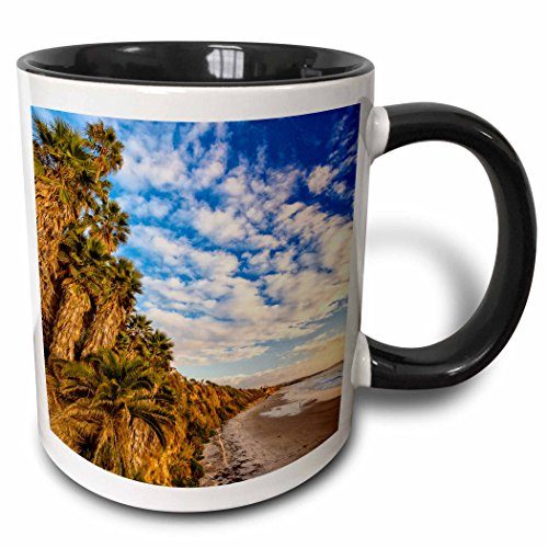 3dRose The golden California coastline at Swamis Beach in Encinitas, CA - Two Tone Black Mug, 11oz (mug_209984_4), 11 oz, - Outlet Encinitas