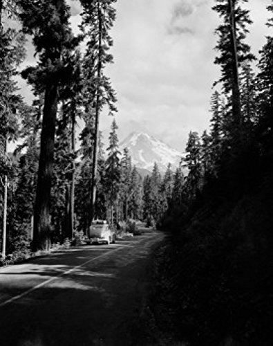 Posterazzi USA Oregon Timberline Lodge Mount Hood from highway East Poster Print (24 x 36) - Timberline Lodge Mount Hood Oregon
