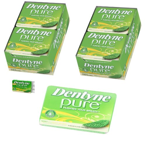 Dentyne Pure Mints with Melon Accents Artificially Flavored Sugar Free Chewing Gum - 20 Pack of 9 Pieces Each (180 Pieces Total)