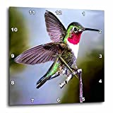 Birds – Hummingbird, Bird – 15×15 Wall Clock (dpp_960_3) For Sale