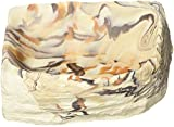 Rock Garden 10 x 10 x 1.25'' Earthtone Corner Bowl, Large