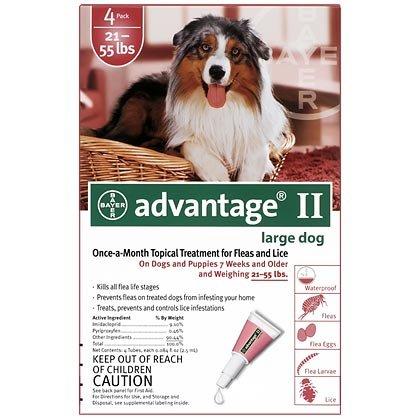 Advantage Flea Preventative 4pk Dog Red 21-55 Lbs, My Pet Supplies