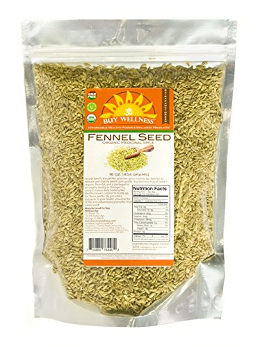 Buy Wellness Organic Fennel Seeds 1 LB Whole Flavorful Fresh Pure European A grade Nutrient Dense