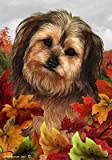 Cheap Yorkiepoo Red/Black- Tamara Burnett Fall Leaves Large Flags