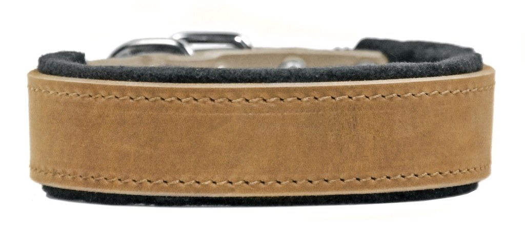 Dean and Tyler  D&T DELIGHT  Dog Collar With Nickel Hardware  Tan  Size 91cm by 7cm Width  Fits Neck Size 86cmes to 97cmes.