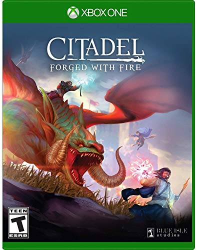 Citadel Forged with Fire - Xbox One Standard Edition