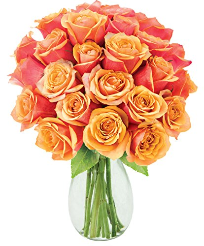 Kabloom Two to Tango Orange Roses (Two Dozen) - The KaBloom Collection Flowers Without Vase