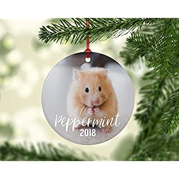 SLobyy Hamster Christmas Ornament Personalized with Your pet Photo Ceramics  Porcelain Ornament Gift for Memory 3inch - Amazon.com: SLobyy Hamster Christmas Ornament Personalized With Your