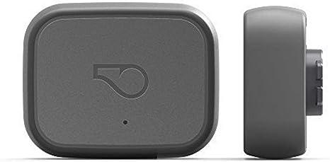 Whistle Silbato 3 GPS Rastreador de Mascota y Monitor de Actividad ...