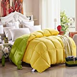 Comforter Winter Quilt Keep Warm Thickening Plume Velvet Quilts with Two Color Mixed , Twin