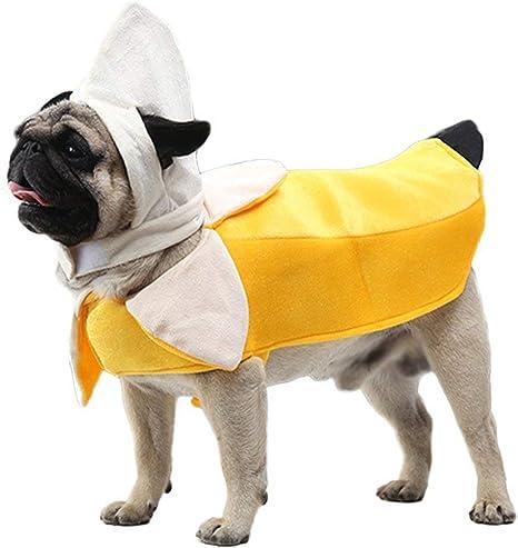 Amazon.com: Disfraz de perro de plátano Youbedo – Disfraz ...