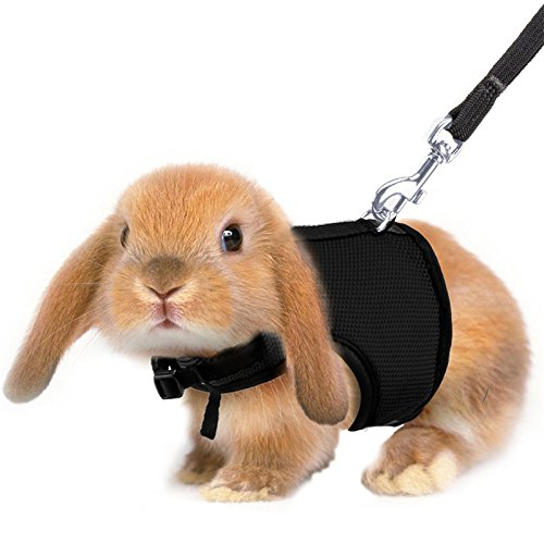 Keebgyy Pet Rabbit Walking Harness Leash Lead,Pet Puppies, used for sale  Delivered anywhere in Canada
