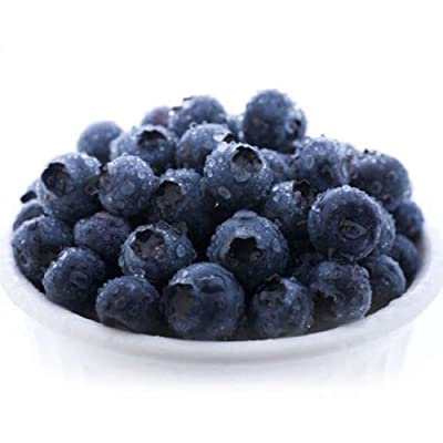 JingYu 30Pcs Blueberry Seeds, Nutrition Delicious Fruit Seeds Tree for Outdoor Garden Farm Planting Blueberry Seeds : Garden & Outdoor
