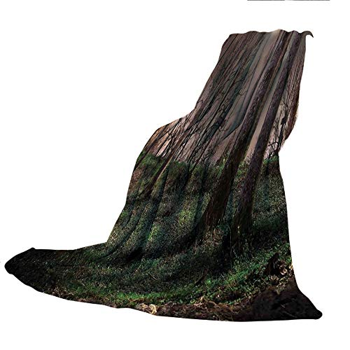 SCOCICI Comfortable Extra-Thick Blanket, Double-Sided Printing,Gothic,Dark Night in The Forest with Full Moon Horror Theme Grunge Style Halloween,Brown Green Yellow,31.50