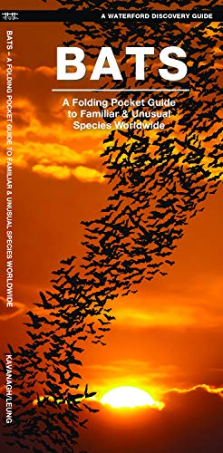 Species Bat (Bats: A Folding Pocket Guide to the Status of Familiar Species (A Waterford Discovery Guide))