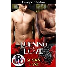 Burning Love (Romance on the Go)