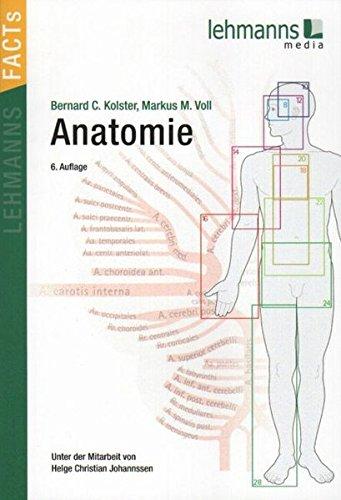 Anatomie: Lehmanns FACTS
