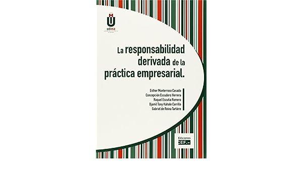 LA RESPONSABILIDAD DERIVADA DE LA PRÁCTICA EMPRESARIAL: Amazon.es: ESTHER MONTERROSO CASADO, CONCEPCIÓN ESCUDERO HERRERA, RAQUEL ESCUTIA ROMERO, ...