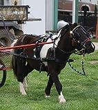 Extra Heavy Duty Black Leather Mini Miniature Horse Drawn Harness