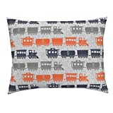Roostery Train Trains Toy Train Steam Engine Baby Boy Grey Little Arrow Euro Knife Edge Pillow Sham (Jumbo Scale) Multi Trains - by Littlearrowdesign 100% Cotton Sateen