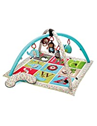 Skip Hop Alphabet Zoo Activity Gym, Multi BOBEBE Online Baby Store From New York to Miami and Los Angeles