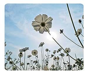 Decorative Mouse Pad Art Print Landscape and Plants Sun Kissed