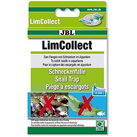 Amazon.com: JBL limcollect II acuario caracol trampa: Mascotas