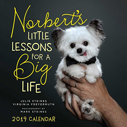 Norbert's Little Lessons for a Big Life 2019 Wall Calendar