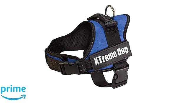 Arquivet 17702 Arnés Xtreme Dog, Camo Azul, XS (44-57 cm): Amazon ...