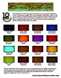 16 Color Sample Pack - Professional Fast Drying Concrete Stain - Easy to