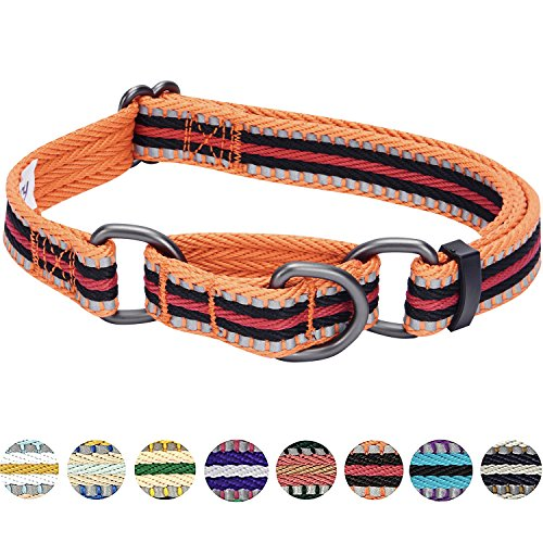 Stripe Martingale Dog Collar - Blueberry Pet 8 Colors 3M Reflective Multi-colored Stripe Safety Training Martingale Dog Collar, Orange and Black, Large, Heavy Duty Adjustable Collars for Dogs