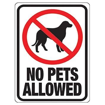 amazon com hy ko 20616 no pets allowed plastic sign 12 inch x 9