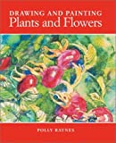 img - for Drawing and Painting Plants and Flowers by Polly Raynes (2003-05-02) book / textbook / text book