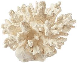 Deep Blue Professional ADB80060 Cauliflower Coral for Aquarium, 6 by 6 by 4-Inch