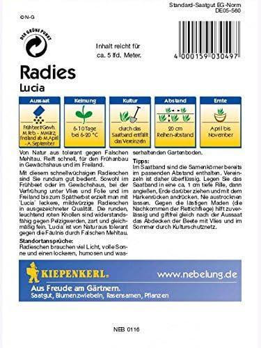 Radies Lucia Saatband