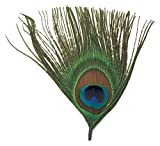 Touch of Nature 38127 Feather Pick, 4-Inch, Natural Peacock