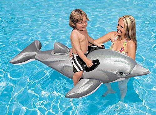 Delfín Hinchable Intex: Amazon.es: Jardín